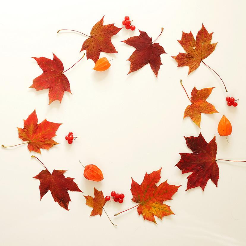 가을의 시작을 문화센터와 함께 ♬