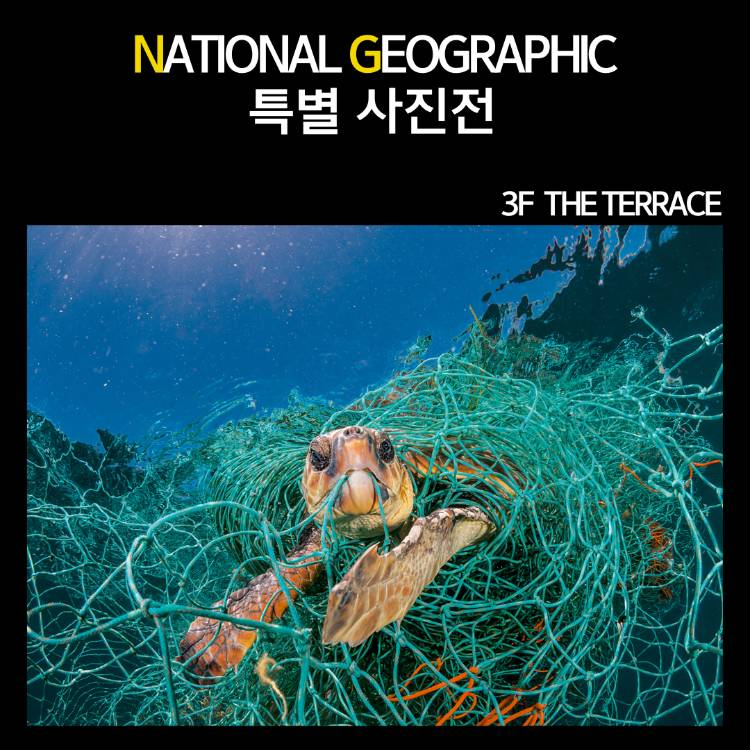 NATIONAL GEOGRAPHIC 특별 사진전