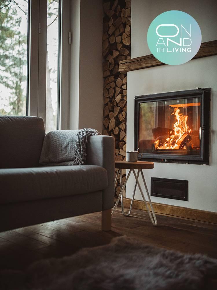 올겨울 우리 집 활기&온기 사수템
