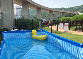 반려동물 수영장